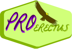 Logo PRO ERECTUS_250_condor